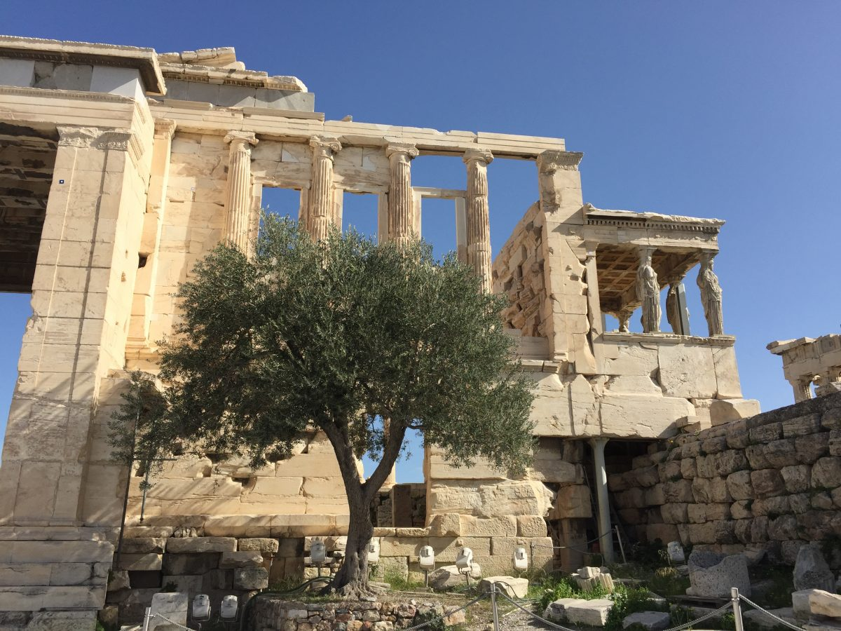 Holidays in Athens (February 2016)